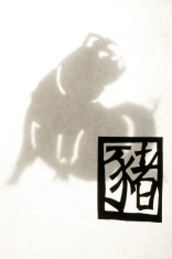 Papercut Zodiac - Pig