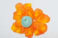 petals of the orange-rose around  aromatic candle