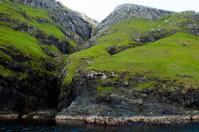 Dramatic Green Cliffs