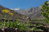 Valley up to the High Atlas mountains