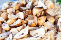 Close-up of Thai mushrooms