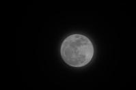 Firest Full Mini Moon 2014