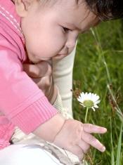 Baby Grabbing flower