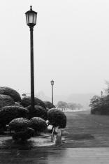 Winter. Streetlight