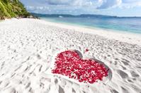 Heart of roses petals on sea sand beach