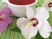 Tea with hibiscus flowers