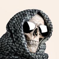 Shemagh skull