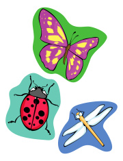 Bright Insects