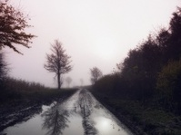 Foggy winter road in English countryside