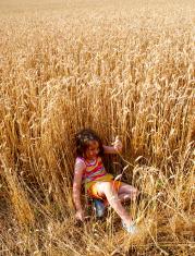 Enjoying the Harvest