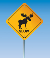 Moose and Sign
