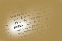 Team Dictionary Definition