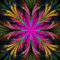 Beautiful multicolor fractal flower. Collection - frosty pattern