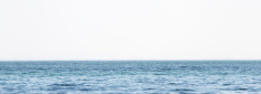 Calm ocean water background (Baltic Sea). On white.