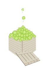 Four Leaf Clovers in A Wooden Cargo Box