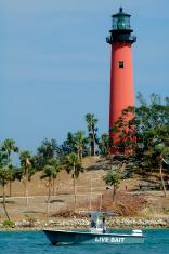 Live Bait / Lighthouse