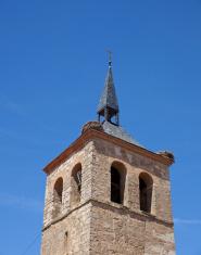 Nest stork on the bell tower