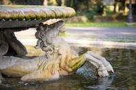 Fontana dei Cavalli Marini- Hippocamp , Rome Italy