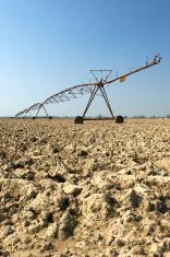 artificial irrigation