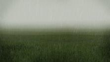 Rainy low visibility grassy fields landscape