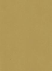 Textured Brown Paper Background