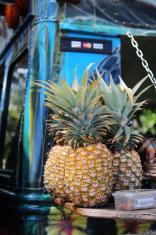 Hawaii fruit stand
