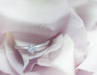 Wedding Engagment Ring Closup.