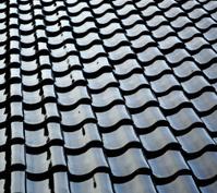 Shiny black roof tiles.