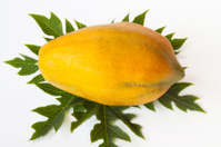 papayas isolate