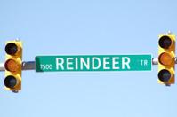 Yellow Reindeer Trail