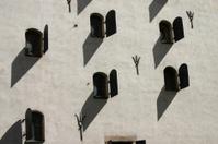 sunny wall 2