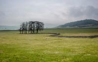 Rainy Yorkshire Dales Scene