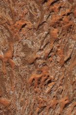 Trockenheit in der Wüste Sahara
