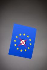 European Elections - Ballot Paper