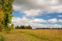 Ohio Prairie