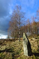 Vätteryd ancient grave-field, Sweden