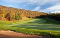 Golf Green in Fall