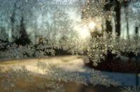 Frosty Window Scenic