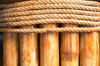 Bamboo Tie