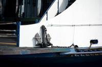 Ship's anchor: 500 pounds