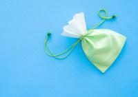 little gift bag