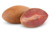 Fresh sapodilla plum with cut on white