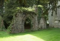 Monastery ruin ivy