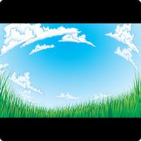 Wide Open Grassy Field
