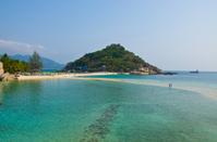 Beach and paradise