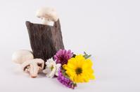 Champiñón con flores y piedra pizarra
