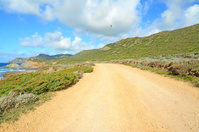 para gliders and dirt road