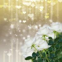 white roses on sparkling background