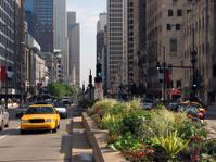 Bustling Chicago Michigan Avenue