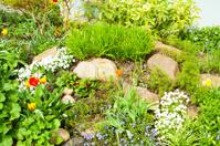 German front garden